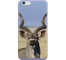 Beautiful Kudu