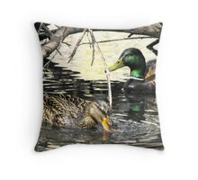 Mallard Drake and Hen Throw Pillow