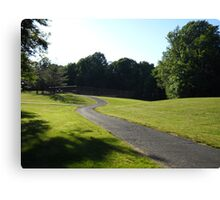 A View Of  Community Park Canvas Print