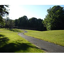 A View Of  Community Park Photographic Print