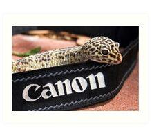 Canon Recruit Art Print