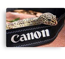 Canon Recruit Canvas Print