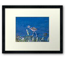 Guess What kind of Bird I Am. Solved Baby Black Neck Stilt shorebird Framed Print