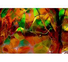 Autumn Glass Photographic Print