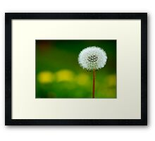 Waiting For A Breeze Framed Print