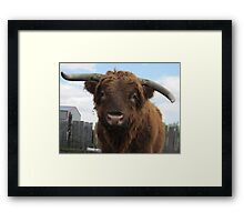 Thunder  20 May 2014 Framed Print