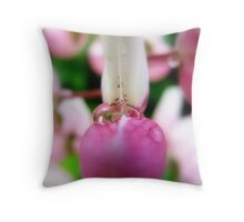 Lupin secret Throw Pillow