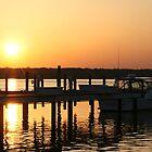 Dock of Sunshine by D.M. Mucha