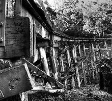 Puffing Billy Bridge by Arek Rainczuk