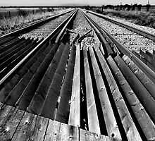 Tracks by Geoff Carpenter