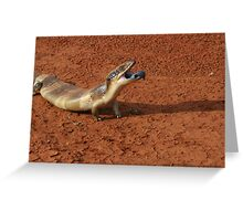 Western Bluey Greeting Card
