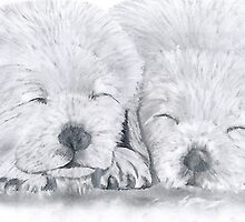 snooze brothers. by Peter Allton