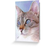 Wedgewood Blue Greeting Card