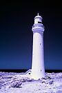 Beacon by Andrew Dickman