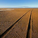 Making Tracks by RoystonVasey