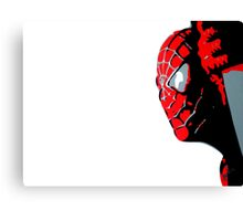 Spidey Canvas Print