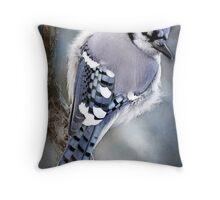 Mr Blue Jay Throw Pillow