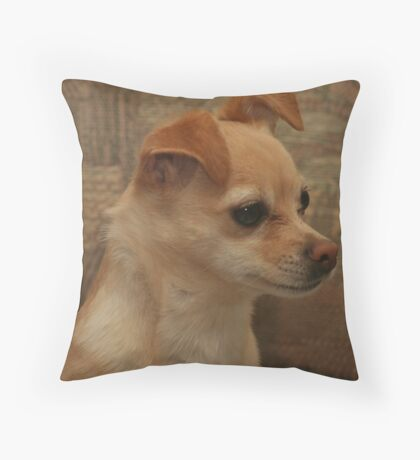 LeeLa Baby  Throw Pillow