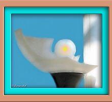 Study In Light by glink