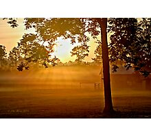 Morning Rays Photographic Print