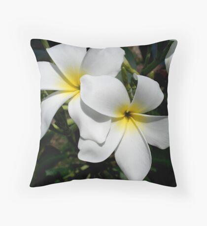 Frangipani/Plumeria Throw Pillow