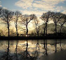Winter trees by mykanmo