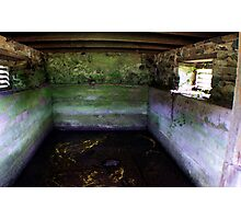 Inside a Springhouse Photographic Print