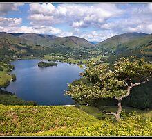Views over Grasmere by Shaun Whiteman