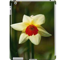 Backlit Narcissus iPad Case/Skin