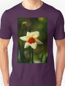 Backlit Narcissus Unisex T-Shirt