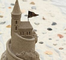 Sandcastle by Denise N Young