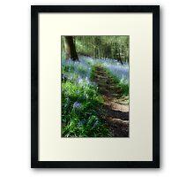Bluebell Rise Framed Print