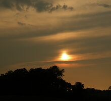 Kentucky Sunset by Bonnie Pelton