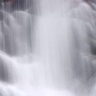 Hidden Falls - Teton National Park - Detail 2 by Stephen Beattie