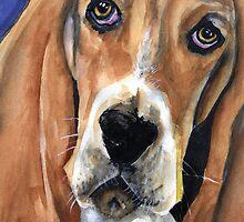Basset Hound by Scott Gardner