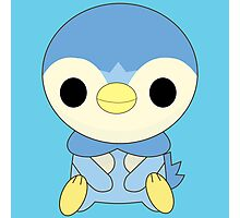 Piplup Photographic Print