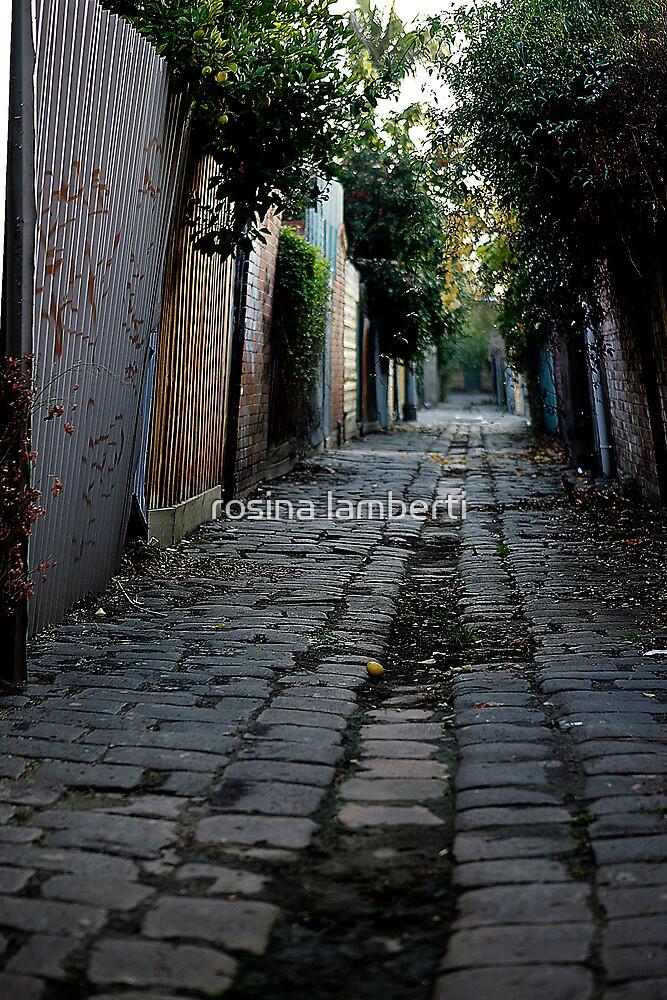 Melbourne Alley by Rosina  Lamberti