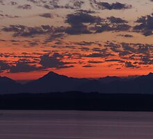 Sunset over the Olympic Mountains by Barb White