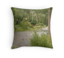 Dolores River Throw Pillow