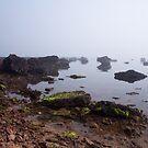 Misty Morning by Vickie Burt