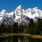 "Midday ""Grand"" View - Teton National Park by Stephen Beattie"