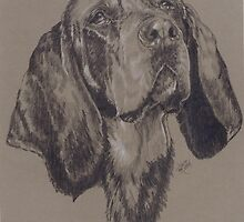 Bluetick Coonhound by BarbBarcikKeith