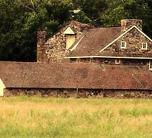 Andrew Wyeth's Old Homestead by Polly Peacock