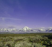 Teton Mountain Range by Luann wilslef