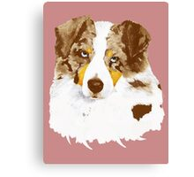Red Merle Australian Shepherd Dog Portrait Canvas Print