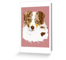 Red Merle Australian Shepherd Dog Portrait Greeting Card