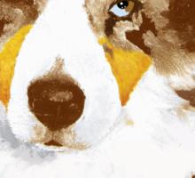 Red Merle Australian Shepherd Dog Portrait Sticker