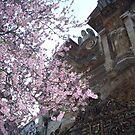 Angel Blossom by DarlingDarkling