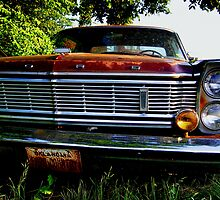 Lost Galaxie by Clayton  Turner