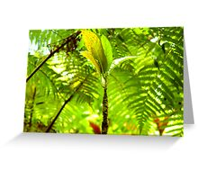 Baby Tropical Tree Surrounded by Fern Greeting Card